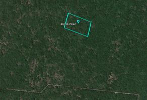 Foto de terreno habitacional en venta en Sierra Papacal, Mérida, Yucatán, 21043327,  no 01