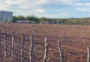 Foto de terreno habitacional en venta en Antonio Rosales (las Animas), Navojoa, Sonora, 15609416,  no 01