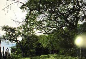 Foto de terreno habitacional en venta en Chietla, Chietla, Puebla, 17300830,  no 01