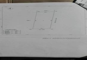 Foto de terreno habitacional en venta en ebano , álamos i, benito juárez, quintana roo, 0 No. 01