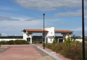Foto de terreno habitacional en renta en ebano , lagunillas, lagos de moreno, jalisco, 5850231 No. 01