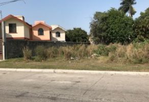 Foto de terreno habitacional en venta en Ampliación Unidad Nacional, Ciudad Madero, Tamaulipas, 20191925,  no 01