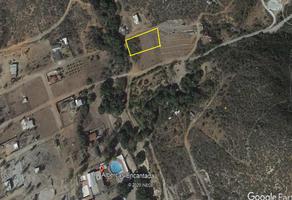 Foto de terreno habitacional en venta en  , ed ruiz cortínez, ensenada, baja california, 0 No. 01