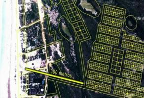 Foto de terreno habitacional en venta en Isla de Holbox, Lázaro Cárdenas, Quintana Roo, 21679174,  no 01