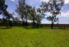 Foto de terreno habitacional en venta en Santiaguito Tlalcilalcali, Almoloya de Juárez, México, 5924500,  no 01