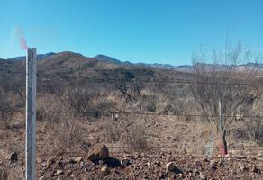 Foto de terreno habitacional en venta en  , ejidal, chihuahua, chihuahua, 18982967 No. 01