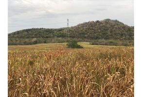 Foto de terreno habitacional en venta en  , ejidal, mazatlán, sinaloa, 14675364 No. 01