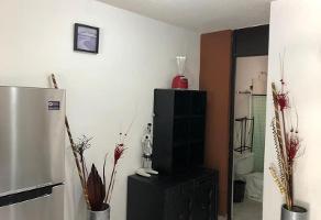 Foto de casa en renta en  , ejidal ocolusen, morelia, michoacán de ocampo, 0 No. 01