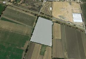 Foto de terreno habitacional en venta en  , ejido colón fracción del moral, colón, querétaro, 12195747 No. 01