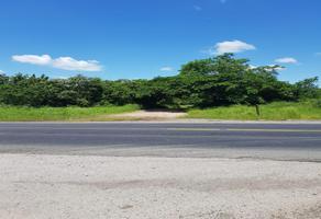 Foto de rancho en venta en ejido coyolitos , san lorenzo, tampico alto, veracruz de ignacio de la llave, 8384217 No. 01
