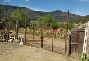 Foto de terreno habitacional en venta en ejido cuahutemoc , cuauhtémoc, saltillo, coahuila de zaragoza, 7119161 No. 01