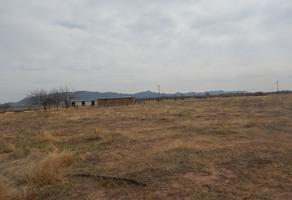 Foto de terreno habitacional en venta en ejido de en medio , aeropuerto, chihuahua, chihuahua, 14183601 No. 01