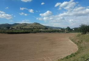 Foto de terreno comercial en venta en ejido de san agustin 1, san agustin, tlajomulco de zúñiga, jalisco, 6079769 No. 01