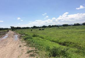 Foto de terreno comercial en venta en ejido el pueblito 01, quintas del bosque, corregidora, querétaro, 15998144 No. 01