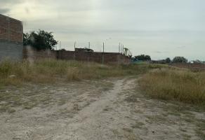 Foto de terreno habitacional en venta en ejido el zapote , el zapote del valle, tlajomulco de zúñiga, jalisco, 14224842 No. 01