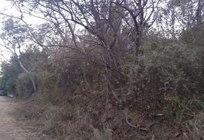 Foto de terreno habitacional en venta en ejido guadalupe victoria , guadalupe victoria, oaxaca de juárez, oaxaca, 14625175 No. 01
