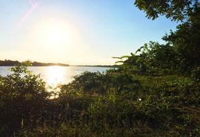Foto de terreno habitacional en venta en ejido isla de juana moza, túxpam, veracruz, 92770 , isla de juana moza, tuxpan, veracruz de ignacio de la llave, 0 No. 01