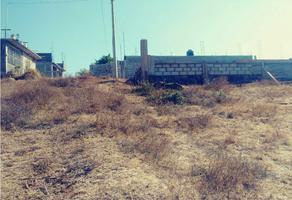 Foto de terreno habitacional en venta en  , ejido j. jesús alcaraz, tacámbaro, michoacán de ocampo, 19581753 No. 01