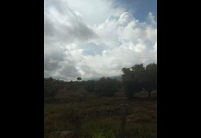 Foto de terreno habitacional en venta en  , ejido j. jesús alcaraz, tacámbaro, michoacán de ocampo, 20187242 No. 01