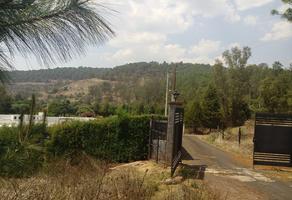 Foto de terreno habitacional en venta en  , ejido jesús del monte, morelia, michoacán de ocampo, 10919713 No. 01