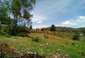 Foto de terreno habitacional en venta en  , ejido jesús del monte, morelia, michoacán de ocampo, 0 No. 01