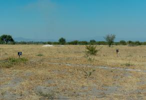 Foto de terreno habitacional en venta en ejido la lira s/n , 20 de enero 2a sección, pedro escobedo, querétaro, 0 No. 01