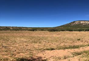 Foto de terreno comercial en venta en ejido la zorra , la zorra, colón, querétaro, 17309531 No. 01