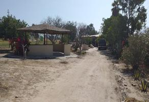 Foto de rancho en venta en  , ejido maclovio rojas, tijuana, baja california, 14343783 No. 01