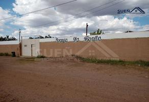 Foto de terreno habitacional en venta en ejido ocampo , melchor ocampo, chihuahua, chihuahua, 16733768 No. 01