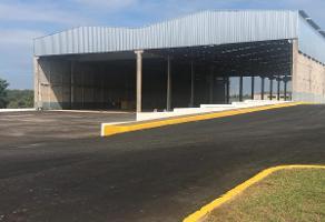 Foto de nave industrial en renta en  , ejido ricardo flores magón, altamira, tamaulipas, 11695635 No. 01