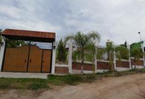 Foto de terreno habitacional en venta en ejido san agustin lote 7, manzana