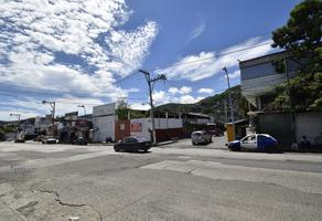 Foto de terreno habitacional en venta en ejido , santa cruz, acapulco de juárez, guerrero, 0 No. 01
