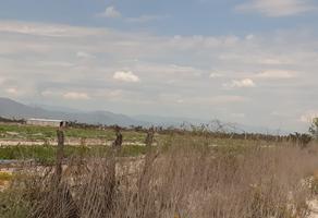 Foto de rancho en venta en ejido vallejo , vallejo, villa de guadalupe, san luis potosí, 18132310 No. 01