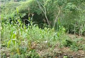 Foto de terreno habitacional en venta en ejido villahermosa , terán, tuxtla gutiérrez, chiapas, 17305536 No. 01