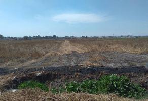 Foto de terreno habitacional en venta en ejido xhahuento, tultepec, méxico , san antonio xahuento, tultepec, méxico, 0 No. 01