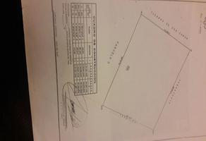 Foto de terreno habitacional en venta en  , el arbolito, aldama, chihuahua, 4904804 No. 01