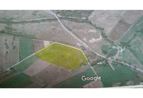 Foto de terreno habitacional en venta en  , el arenal, el arenal, jalisco, 4612793 No. 01