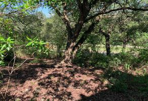 Foto de terreno habitacional en venta en el barrial 1, bosque residencial, santiago, nuevo león, 0 No. 01