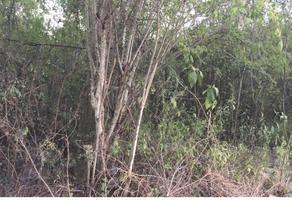 Foto de terreno habitacional en venta en  , el barrial, santiago, nuevo león, 19157466 No. 01