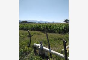 Foto de terreno comercial en venta en  , el alpuyeque, colima, colima, 12131652 No. 01