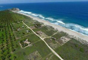 Foto de terreno habitacional en venta en  , el cacalote, villa de tututepec de melchor ocampo, oaxaca, 0 No. 01
