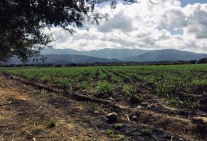 Foto de terreno comercial en venta en el cahuite , las guásimas, colima, colima, 0 No. 01
