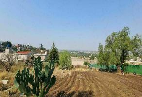 Foto de terreno habitacional en venta en el calvario , la concepción jolalpan, tepetlaoxtoc, méxico, 0 No. 01