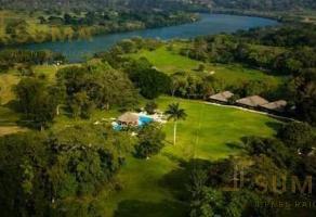 Foto de terreno habitacional en venta en  , el carrizal 2, aldama, tamaulipas, 17507596 No. 01