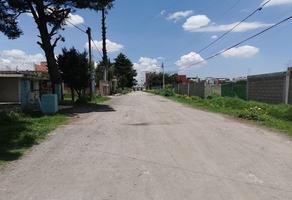 Foto de terreno habitacional en venta en  , el castaño, metepec, méxico, 0 No. 01