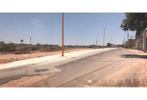 Foto de terreno habitacional en venta en  , el cedazo, aguascalientes, aguascalientes, 0 No. 01