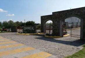 Foto de terreno habitacional en venta en el chaparral , tepexco, tepexco, puebla, 0 No. 01