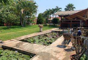 Foto de casa en venta en el charco , el charco, tetecala, morelos, 0 No. 01