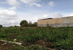 Foto de terreno habitacional en venta en el chivato kilometro 3.5 , villas de bugambilias, villa de álvarez, colima, 0 No. 01