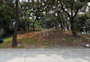 Foto de terreno habitacional en venta en el cielo , el palomar, tlajomulco de zúñiga, jalisco, 20961094 No. 01